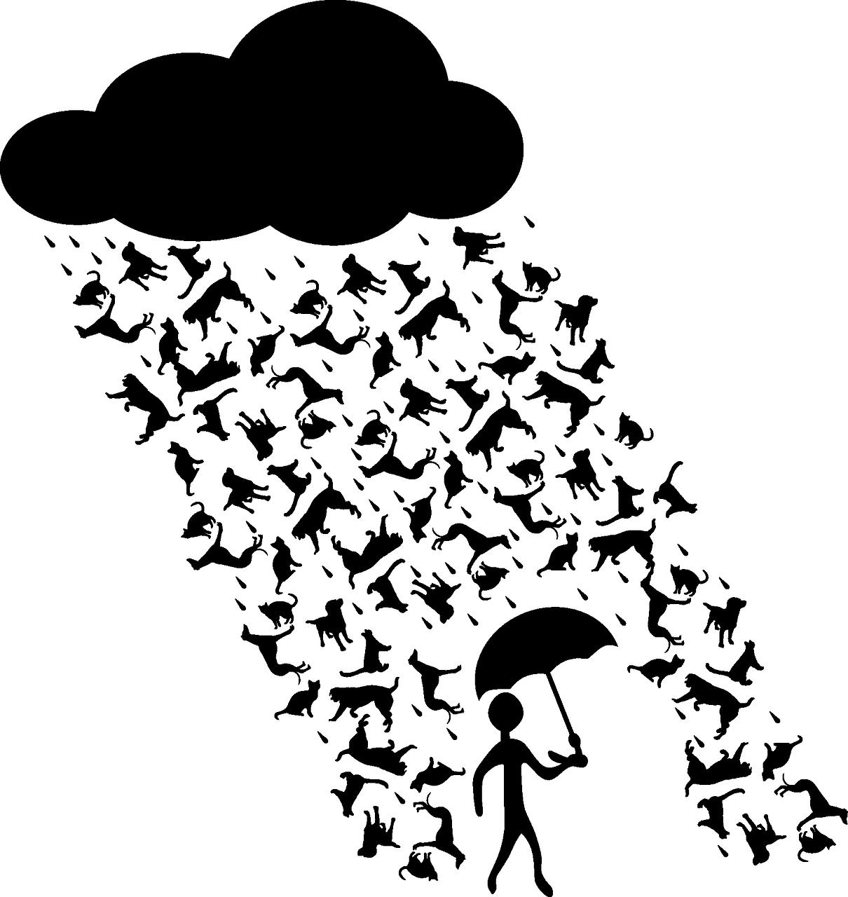 Rainstorm Rain Cats And Dogs Rain  - OpenClipart-Vectors / Pixabay