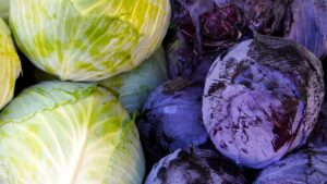 Kohl Red Cabbage White Cabbage  - matthiasboeckel / Pixabay