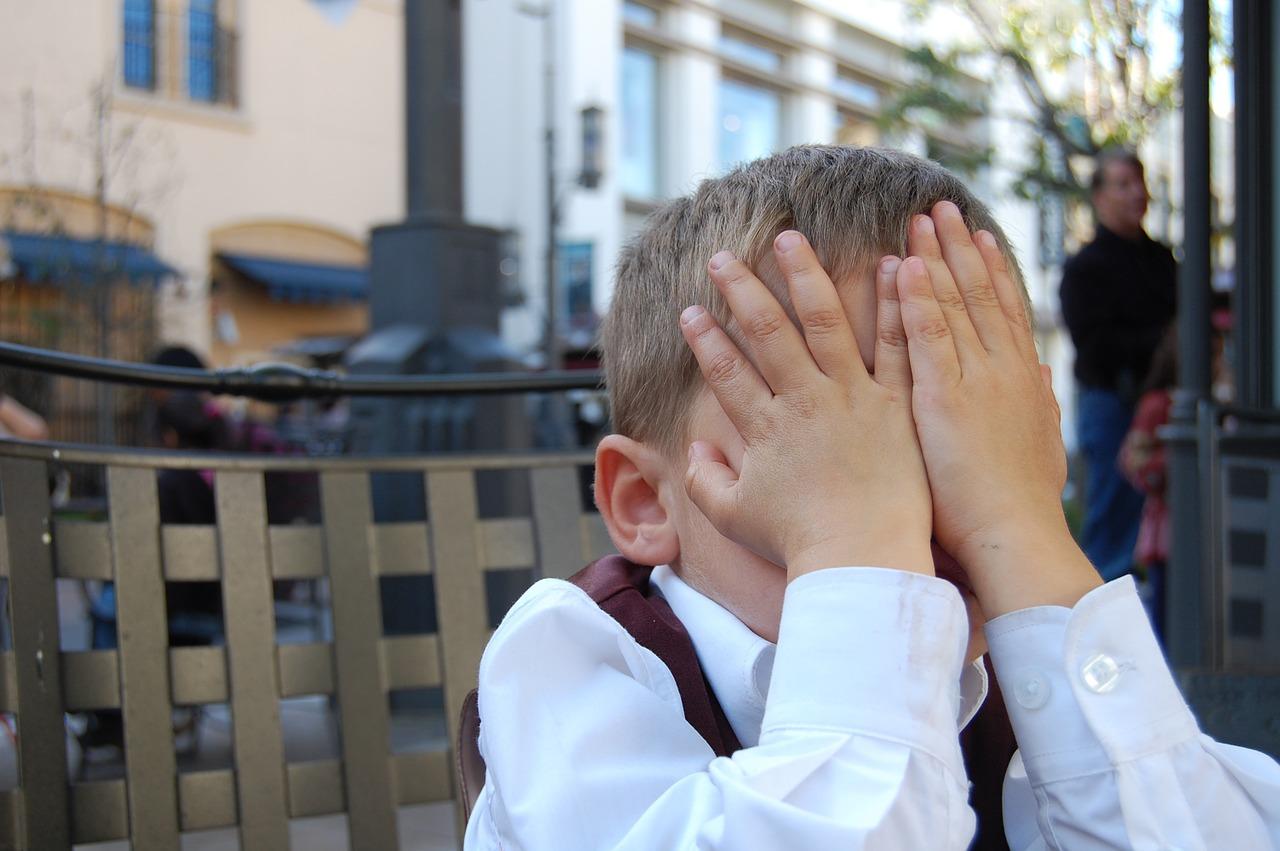 Boy Facepalm Child Youth  - mintchipdesigns / Pixabay
