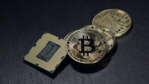 btc tanár toborzás 2021 dragons den bitcoin trader platform