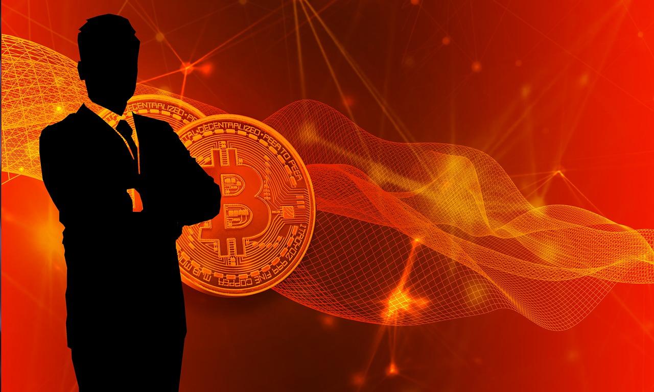 Bitcoin Business Money  - TheDigitalArtist / Pixabay